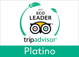GreenLeader Platinum  - Platinum level